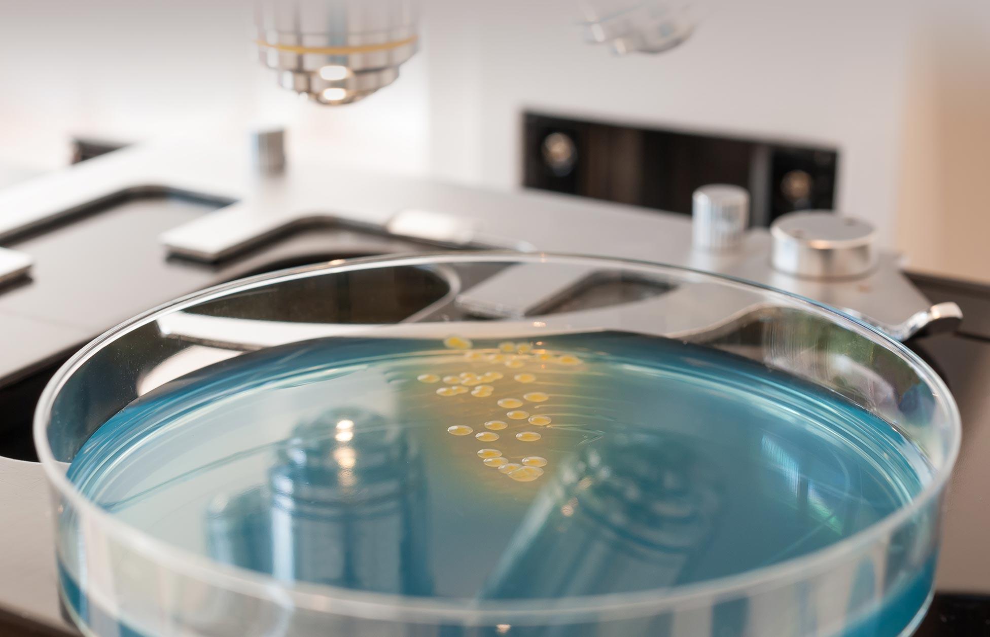 suez-water-uk-laboratory-03